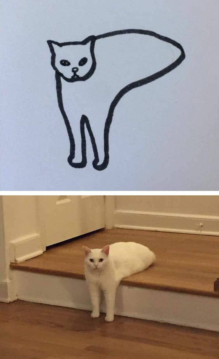 minimalist cat art subreddit 12 - Walau Cuma Garis Sederhana, 13 Gambar Kucing Ini Tampak Mirip dan Kocak