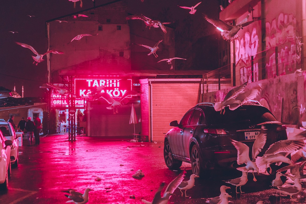Neon Nightscapes Elsa Bleda