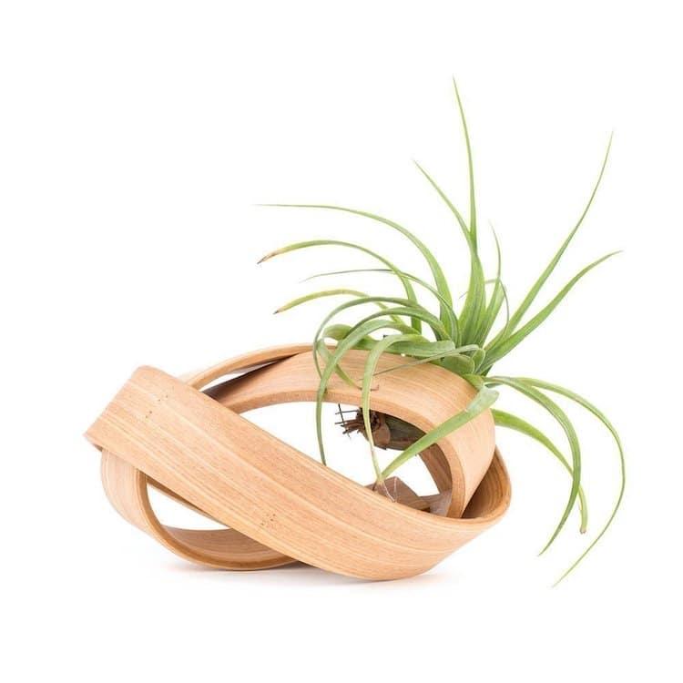 Regalos de Jardinería Regalos para Amantes de las Plantas