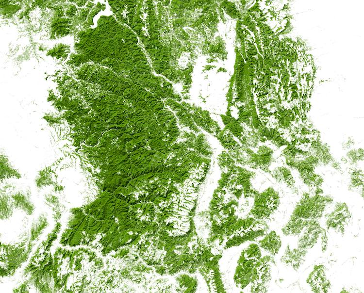 Map Of Usa Forests.United States Map From Over 1000 Million Acres Of Forests