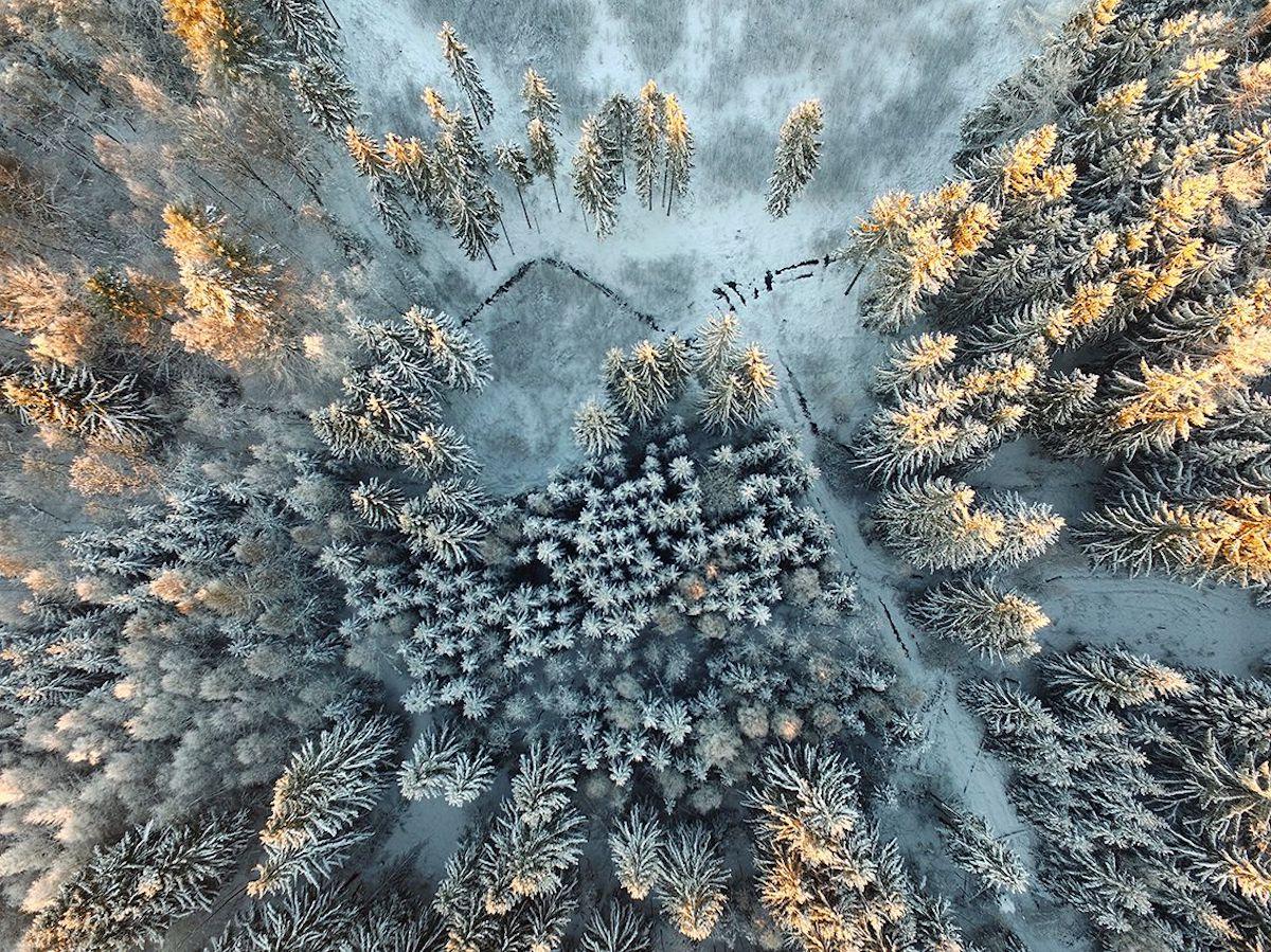 2017 Siena International Photo Awards Photo Contest