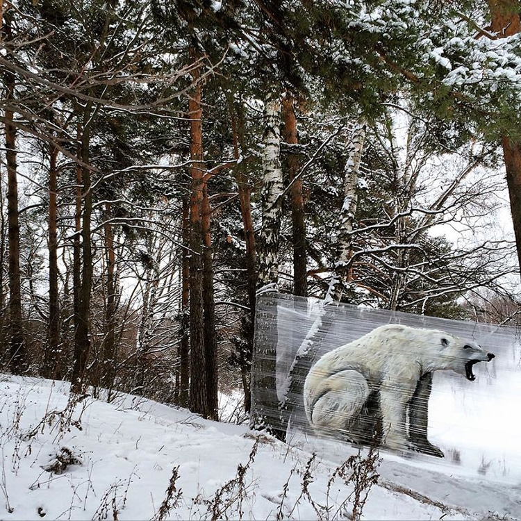 CelloGraff Forest Animals by Evgeny Ches