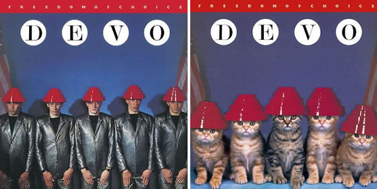 Cat Album Covers
