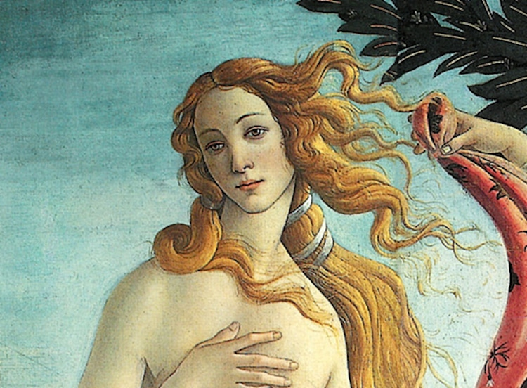 Botticelli Birth of Venus Painting Botticelli Venus Italian Renaissance Art