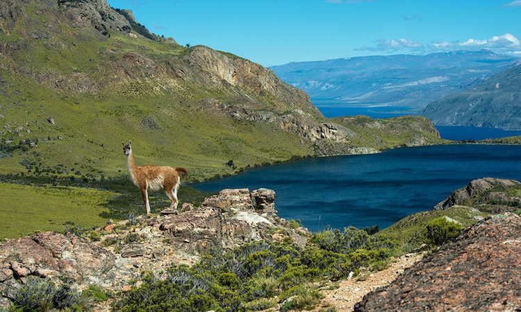 Chile National Parks tompkins conservation