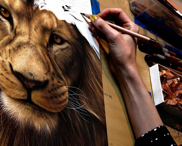 Colored Pencil Art Drawing