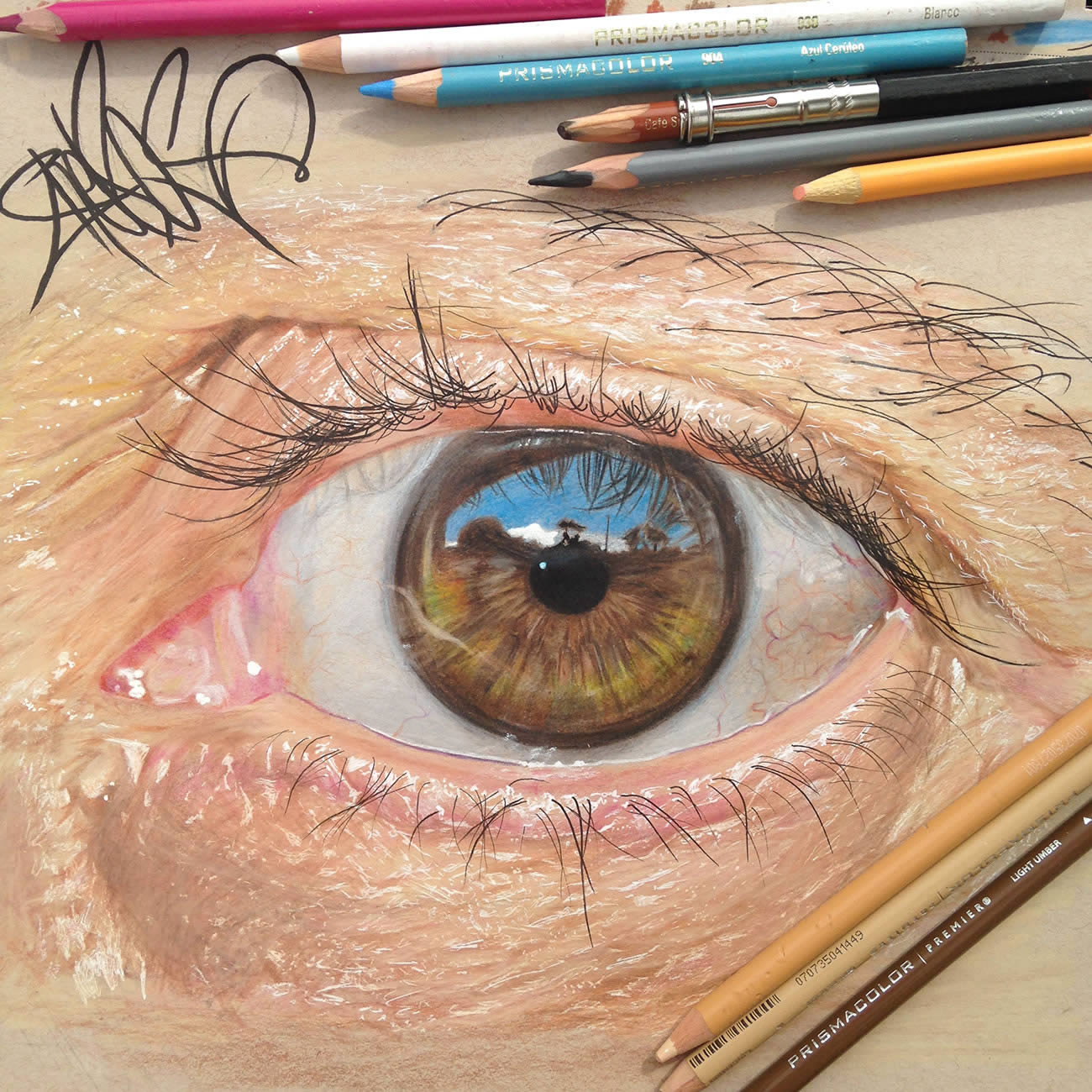 Color Pencil Art Eyes