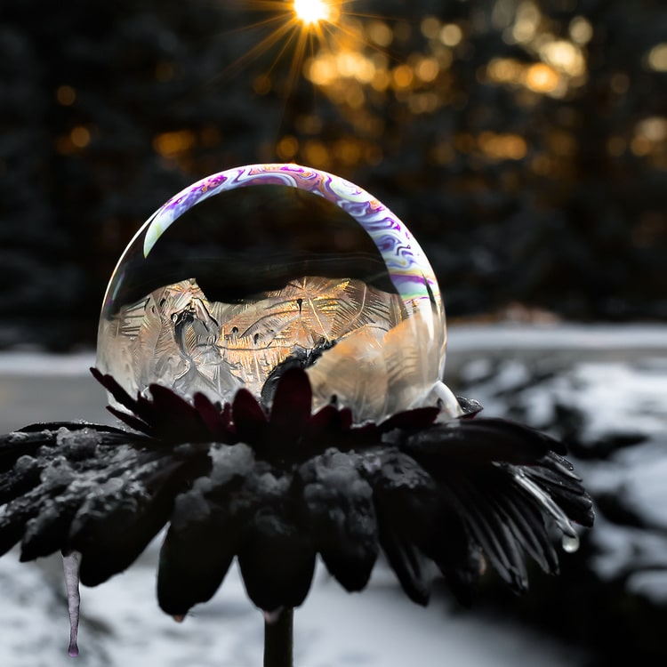 Frozen Bubble Photos by Hope Carter