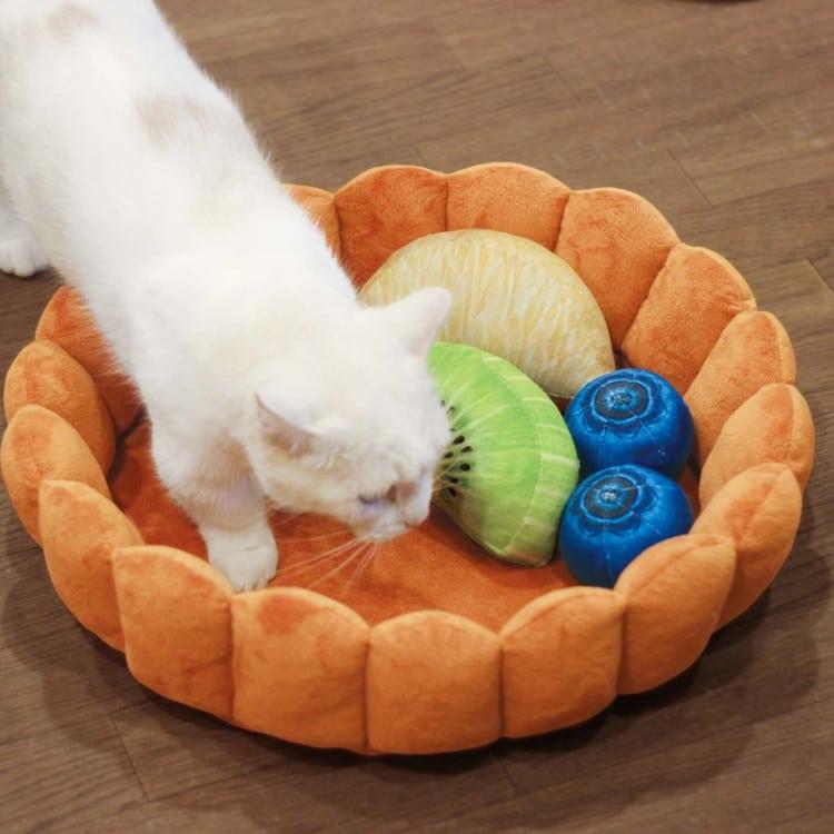 Novelty Cat Bed Looks Like A Giant Fruit Tart
