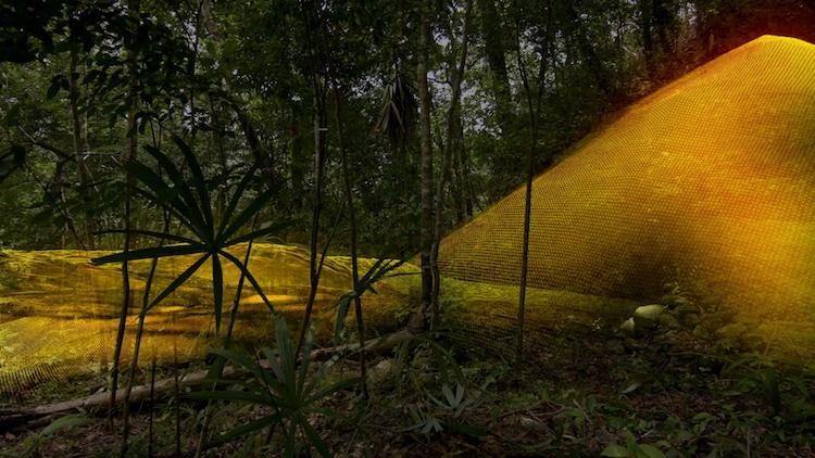 Maya Civilization Laser Mapping