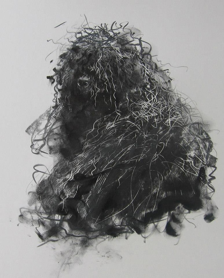 Dog Drawings by Endre Penovac