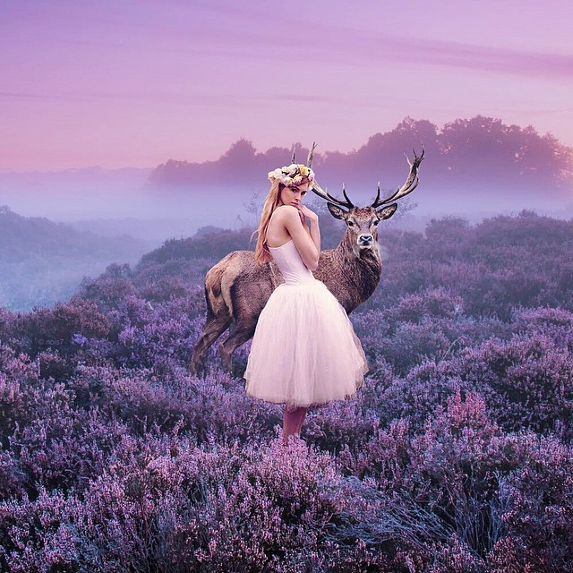 Fairytale Animal Digital Art Robert Jahns Photomanipulation