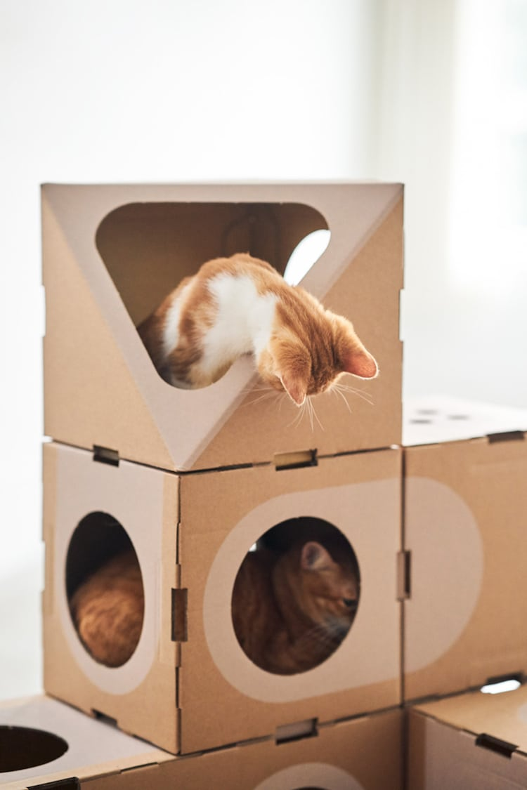 Modern Cat Furniture
