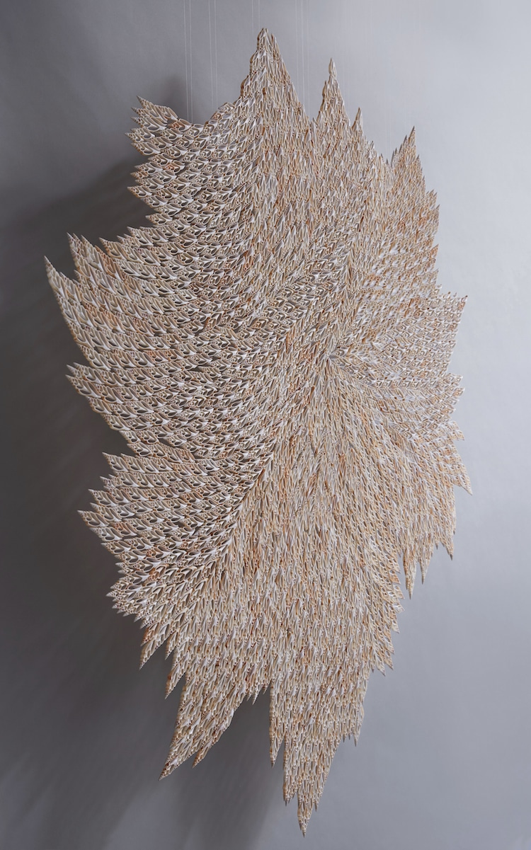 Seashell Sculptures by Rowan Mersh