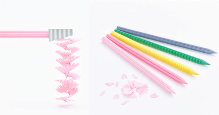 Japanese Flowers Cute Pencils Petal Pencil Shavings Flower Pencils  Toshihiro Otomo