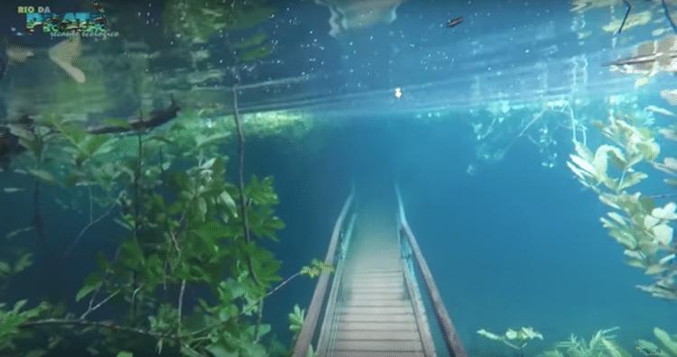 Recanto Ecológico Rio de la Plata Underwater Park Underwater Bridge Crystal Clear Water