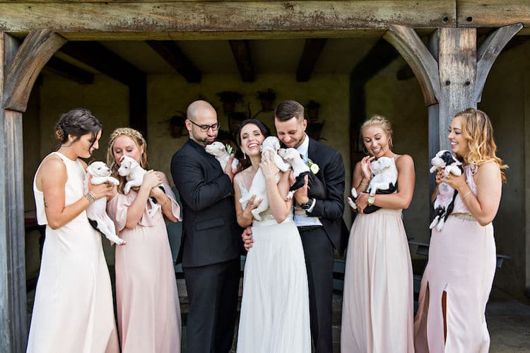 Wedding with Puppies Photographed by Rebecca Lynne Photography