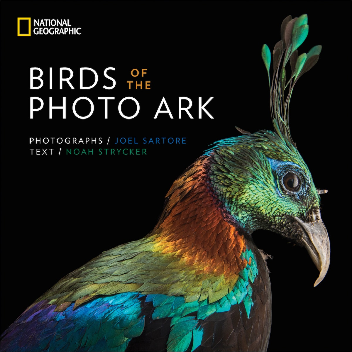 Bird Species Animal Portraits by Joel Sartore