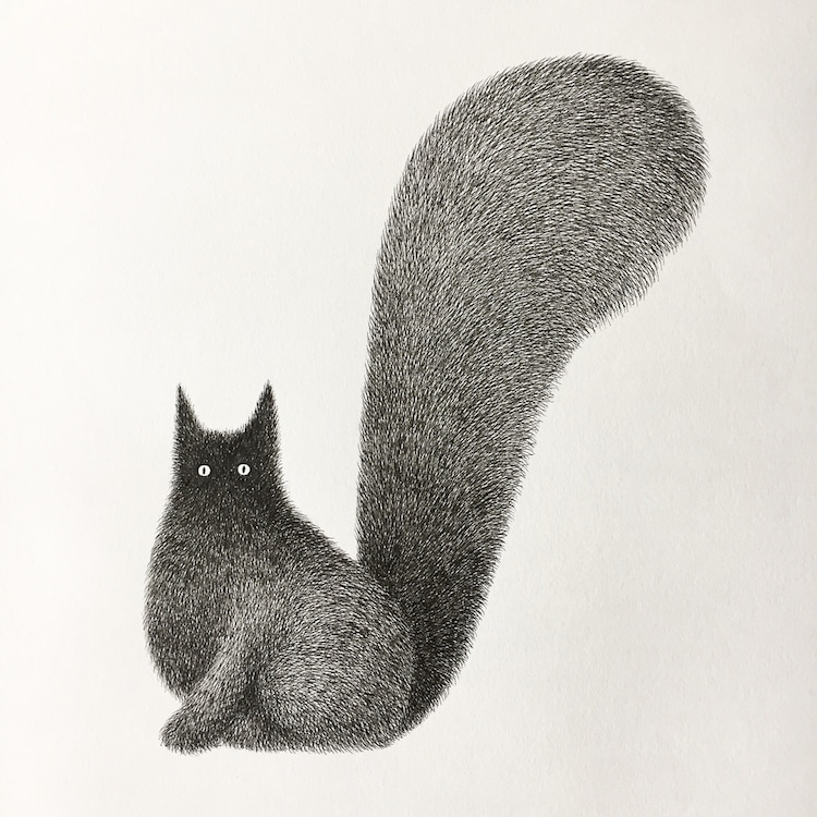 Fluffy Black Cat Ink Drawings by Kamwei Fong