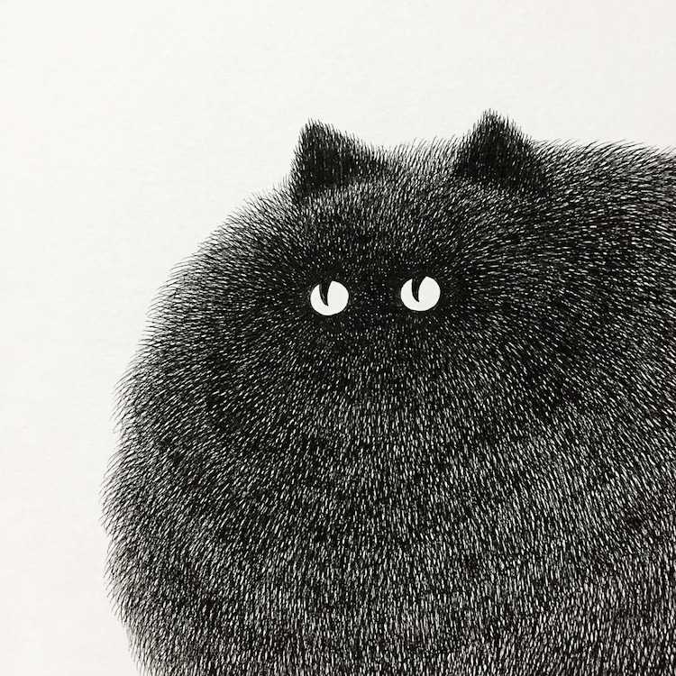 fluffy-black-cat-ink-drawings-kamwei-fon