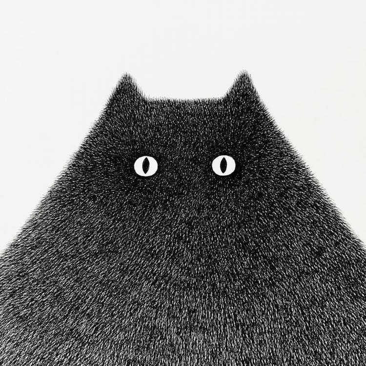 Fluffy Black Cat Ink Drawings Express The Personalities Of