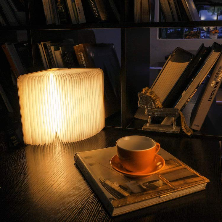 Gifts for Book Lovers Book Lamp