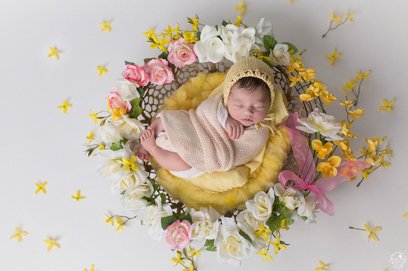 Nature Mandala Newborn Photos Gaba Svarbu JustGaba Photography