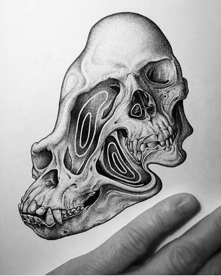 Paul Jackson skull drawings