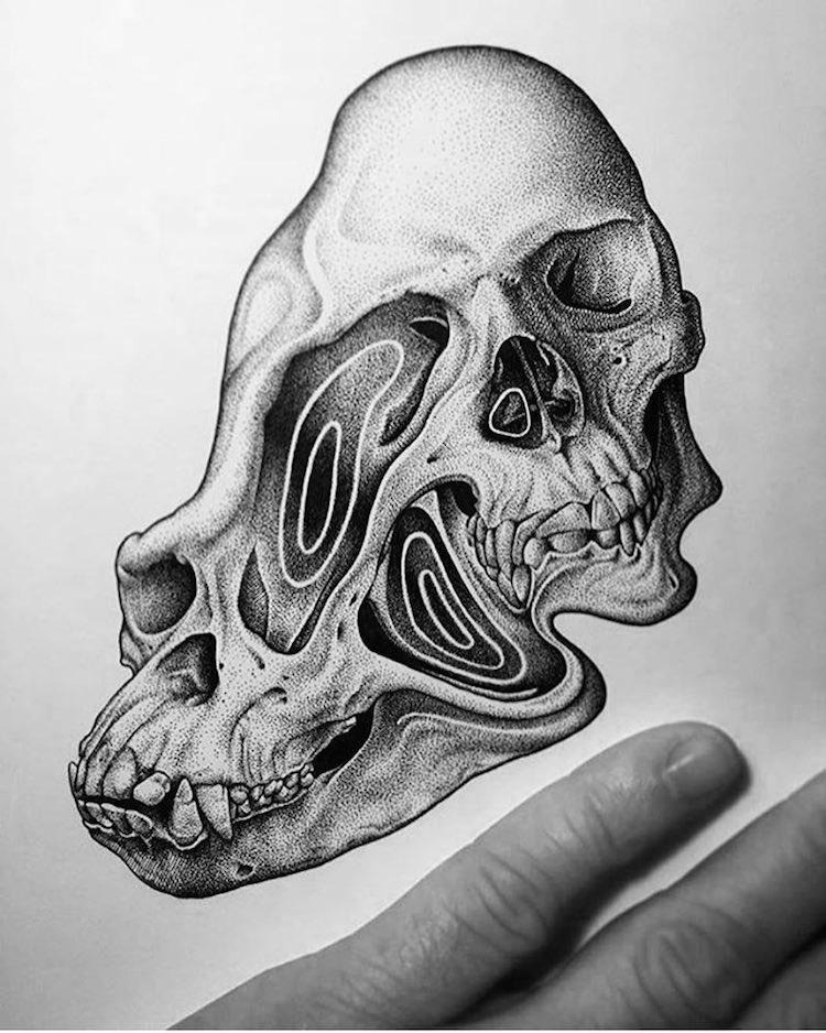 Paul Jackson skull drawings