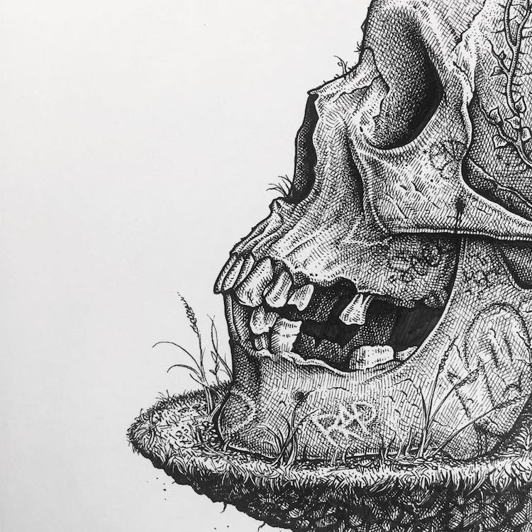 Paul Jackson skull drawing