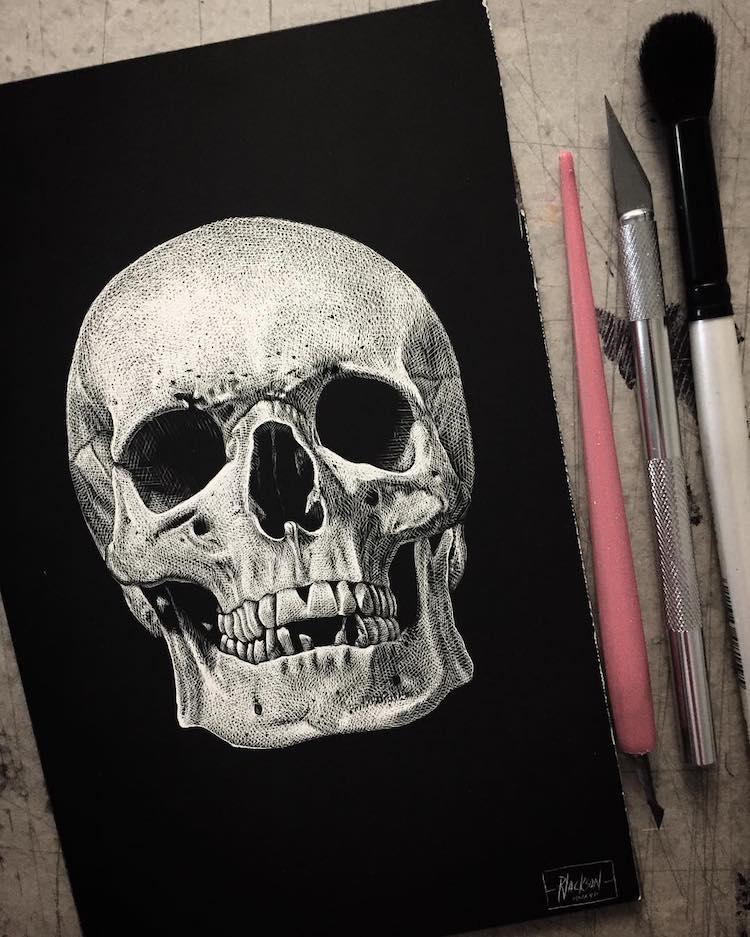 Paul Jackson scratchboard skull