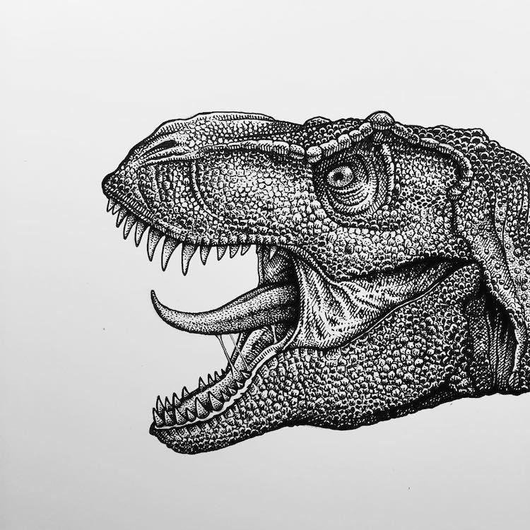 Paul Jackson dinosaur illustration