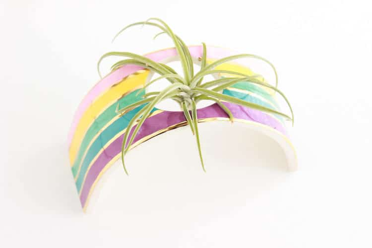 Rainbow Gifts Rainbow Products Colorful Gifts Rainbow Planter