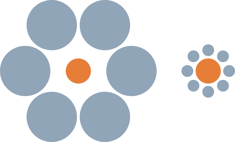 Ebbinghaus Illusion
