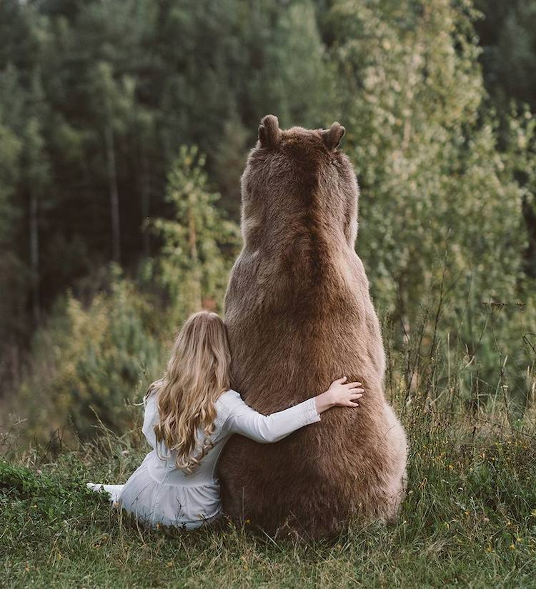 Animal Photography Imagines Forest Creatures As Fairy Tales