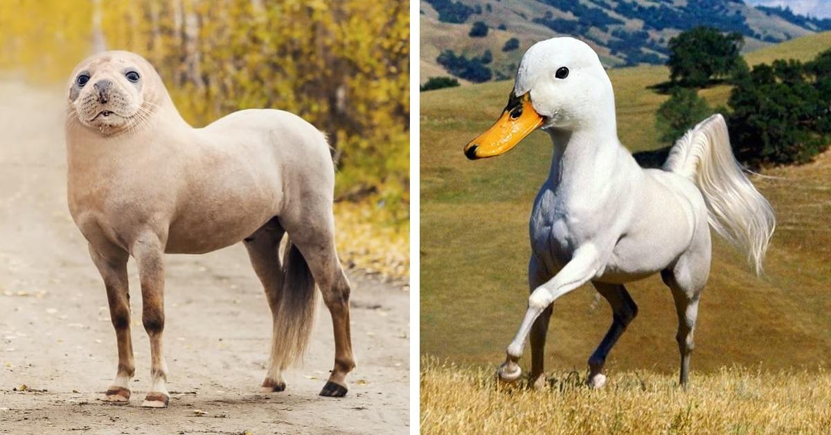 Celebrity animal photoshop hybrids