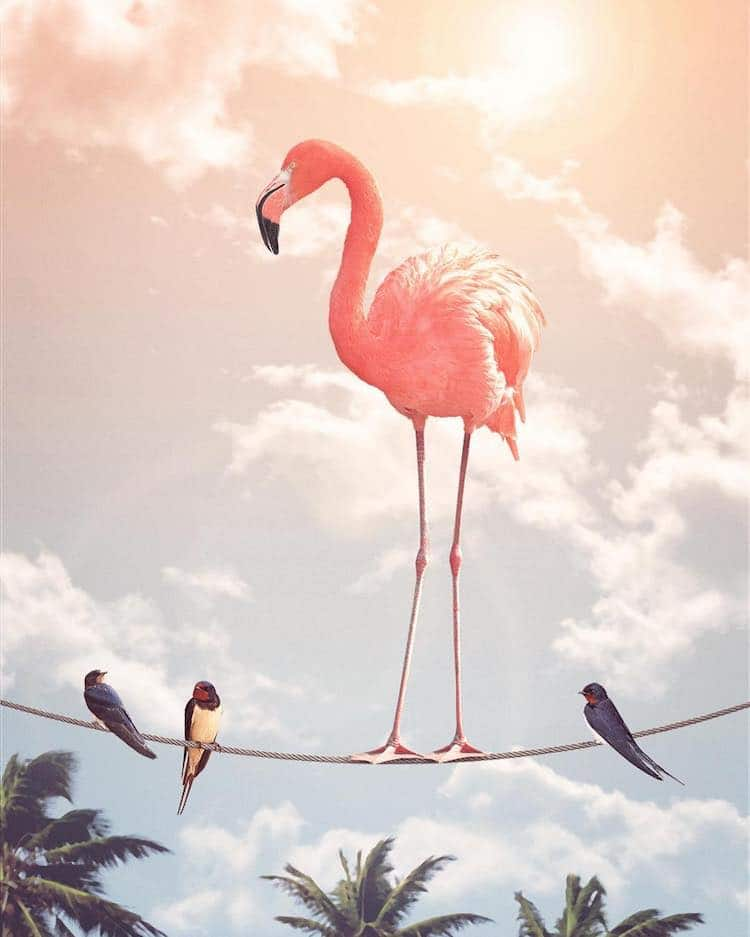 Fantasy Digital Art by Jonas Loose