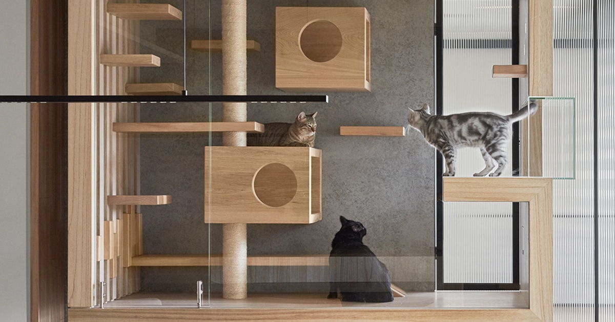 architecture climbers modern for com condos cat your within trees and stylish remodel furniture kwacentral ultra