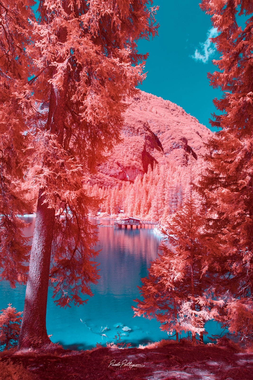 Infrared Photography Paolo Pettigiani