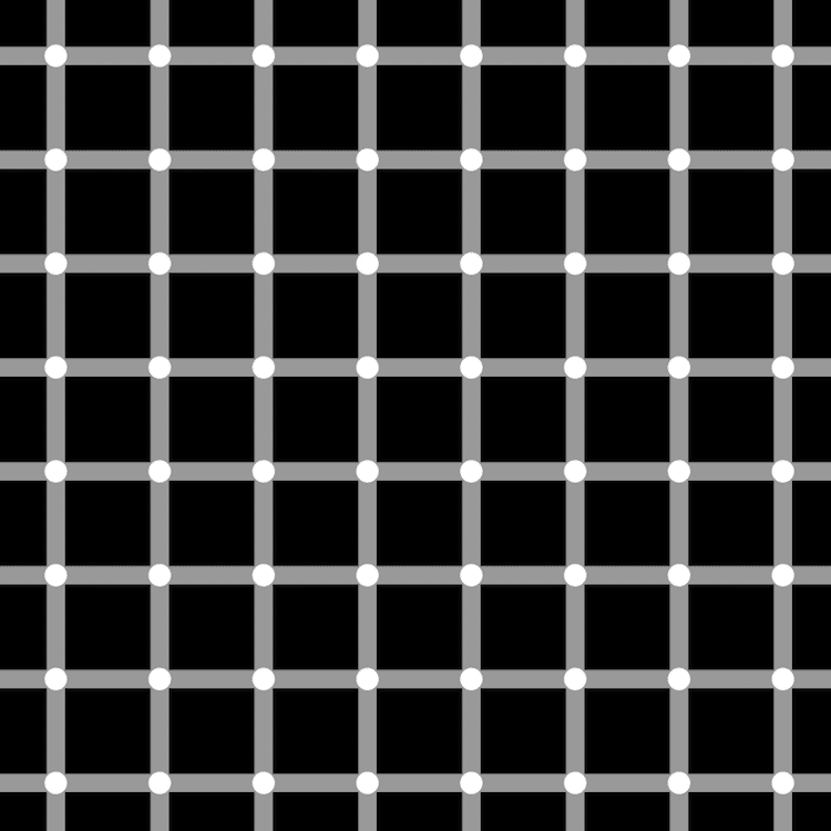 Scintillating Grid Optical Illusion