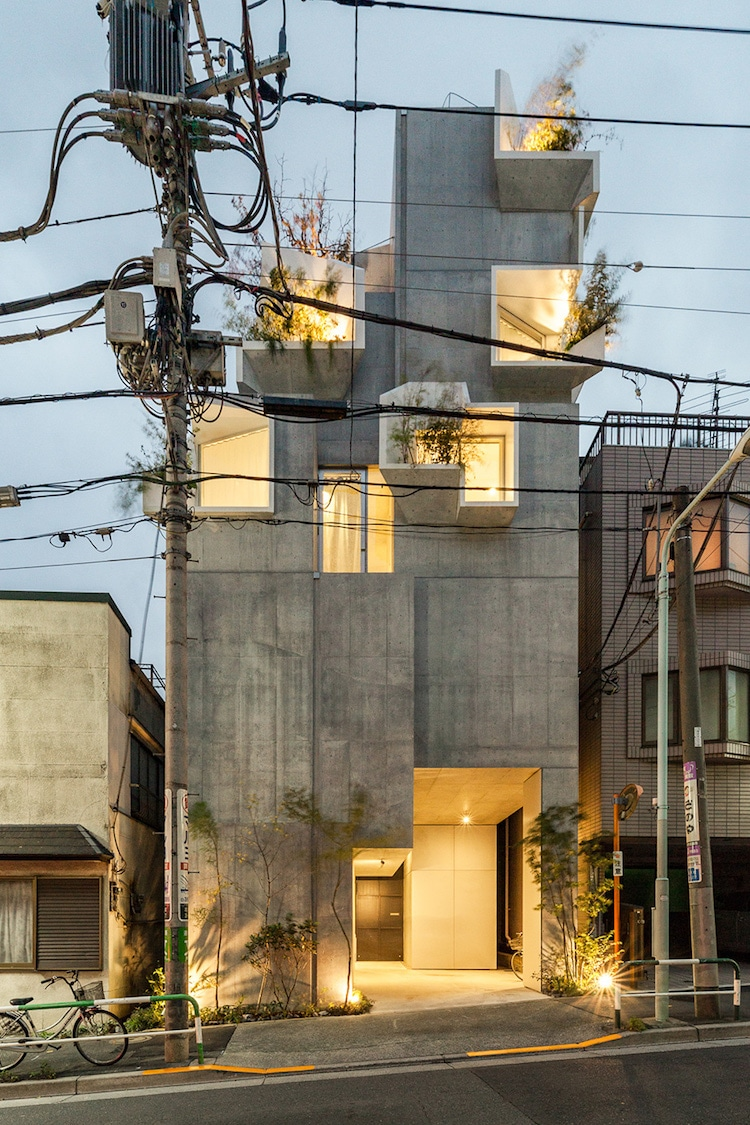 Tree-ness House by Akihisa Hirata