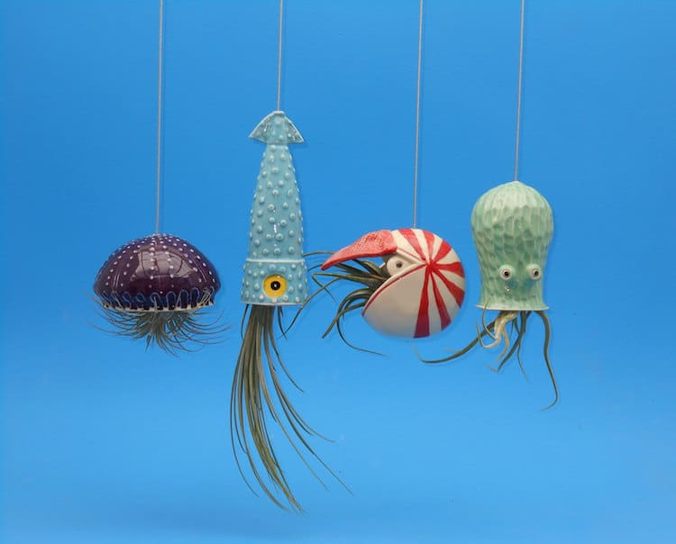 Air Plant Holder Ocean Animals Animal Planters Hanging Planters