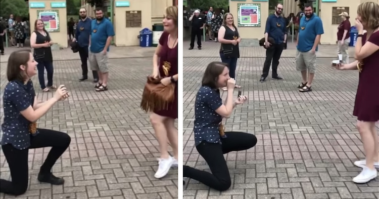 Double Wedding Proposal Video Proposal Videos Couple Proposes at the Same Time