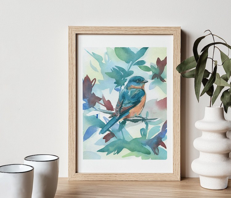 Eastern Bluebird Art Print