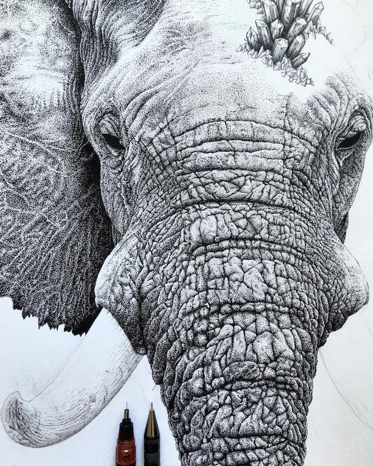 Stippling Art by Nicholas Baker