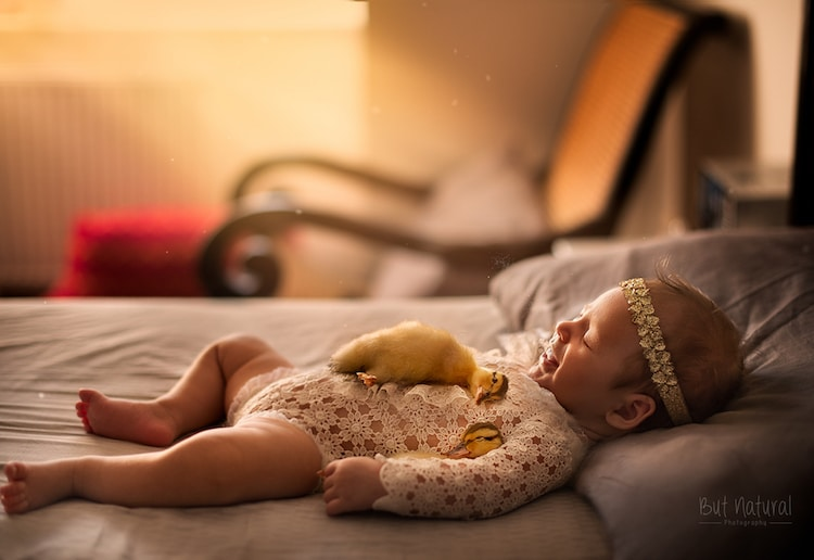 Baby Animals and Babies Sujata Setia