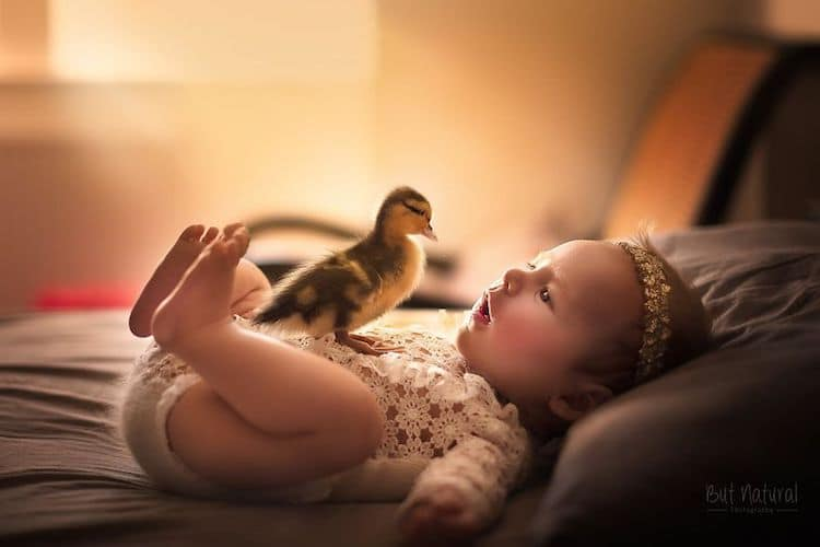 Baby Animals and Babies Sujata Setia
