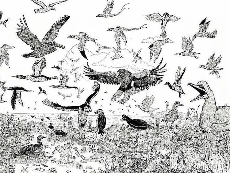 Animal Drawings by Child Prodigy Dušan Krtolica