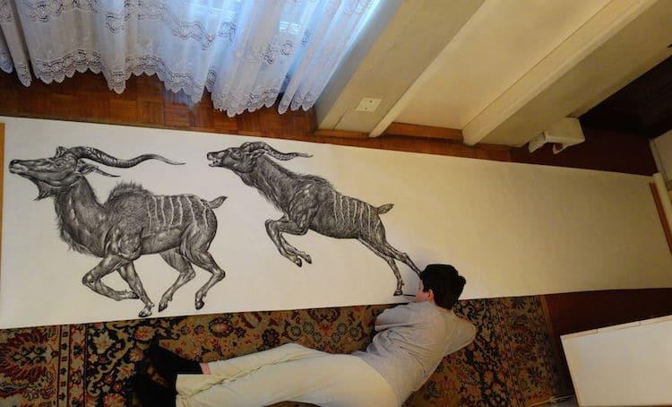 Dibujos de animales del niño prodigio Dušan Krtolica