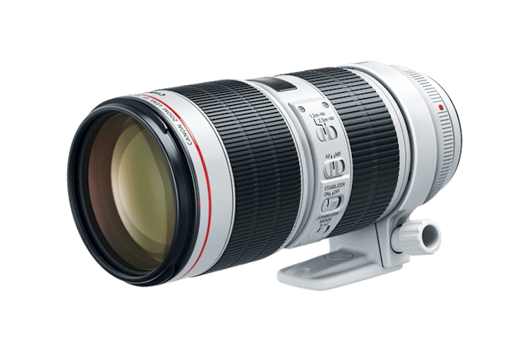 Canon - EF 70-200mm f/2.8L IS III USM